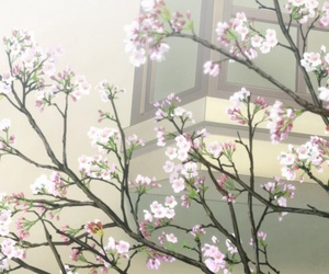 anime and spring image