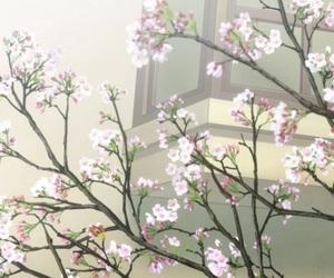 anime, beautiful, and sakura image