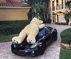 car, luxury, and bear image