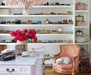 shoes, closet, and room image
