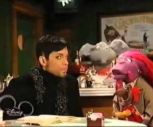 muppets, music, and prince image