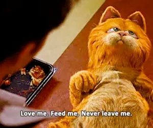 garfield, cat, and food image