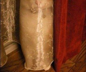 funny, cat, and creepy image