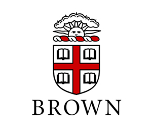 brown, Dream, and dreams image