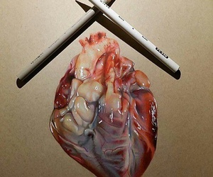 drawing, heart, and art image