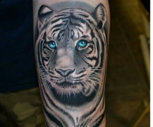 tattoo, tiger, and blue image
