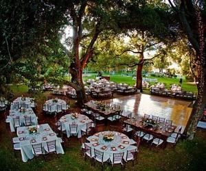 boda, tree, and wedding image
