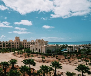 beach, palmtree, and resort image