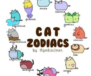 zodiac, cat, and cancer image