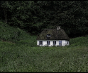cottage and thatched roof image