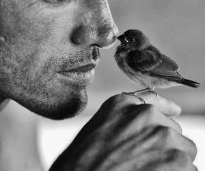 bird and man image
