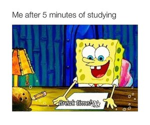 funny, studying, and spongebob image