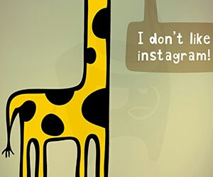 funny and giraffe image