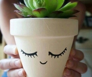 diy, plants, and cute image