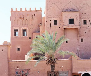 pink, travel, and morocco image