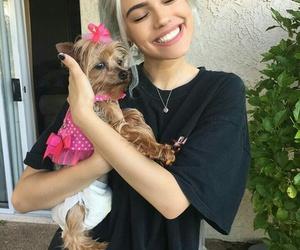 dog, kelsey, and fatherkels image