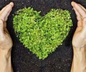 earth day, green, and hands image