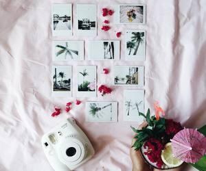 polaroid, tumblr, and camera image
