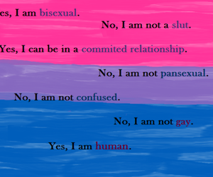 bisexual, text, and sexuality image