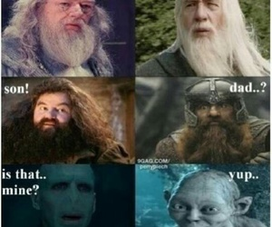 harry potter, funny, and lord of the rings image