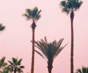 pink, header, and pretty image