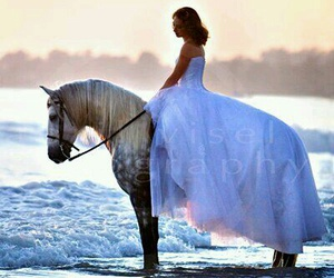 horse, wedding, and beach image
