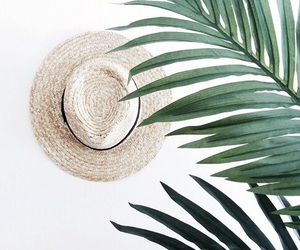 green, hat, and plants image