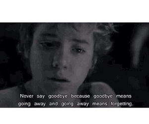 goodbye, peter pan, and forget image