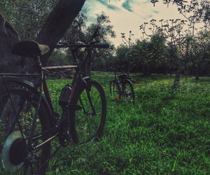 adventure, bicycle, and countryside image