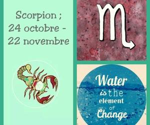 eau, scorpion, and astrologie image