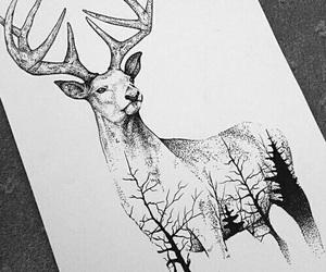 animal, animals, and black image
