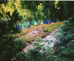 camping and trees image