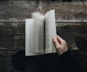 book, Dream, and escape image