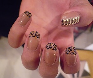 leopard print, nails, and studs image