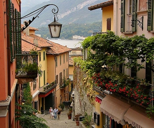 bellagio, flowers, and italy image
