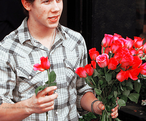 nick jonas, roses, and flowers image