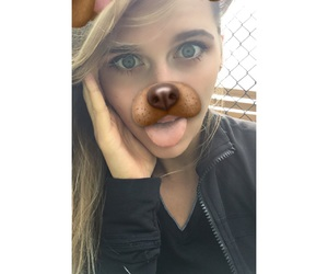 crazy, lol, and dog image