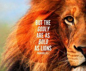 bible, lion, and god image