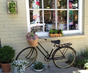 aesthetic, bike, and flowers image