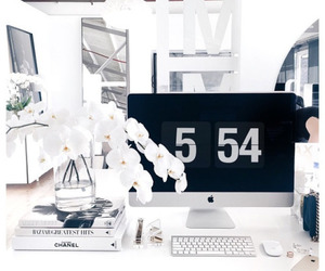 white, flowers, and apple image