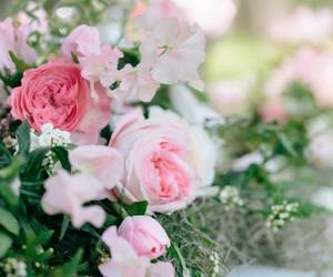 floral, rose garden, and floral decor image
