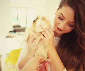 animals, brunette, and perfection image