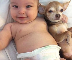 baby, dog, and smile image