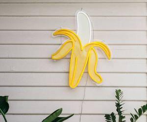 banana, plants, and yellow image