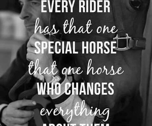horse, rider, and quote image