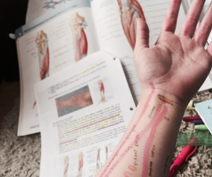 arm, study, and drawing image