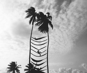 summer, black and white, and hammock image
