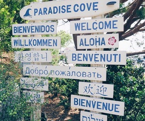 travel, paradise, and tropical image