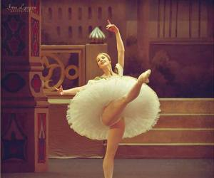ballerina, dance, and photography image