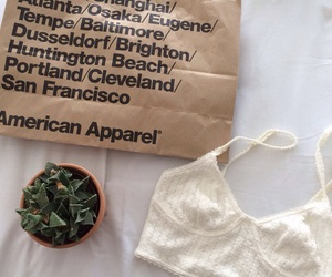 american apparel, shopping, and tumblr image